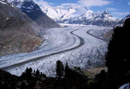 Aletsch glacier on the walk...