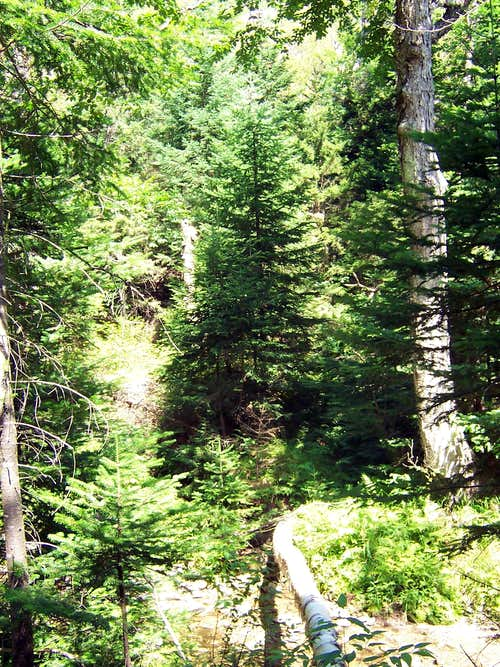 Hunters Slide - Brook Crossing
