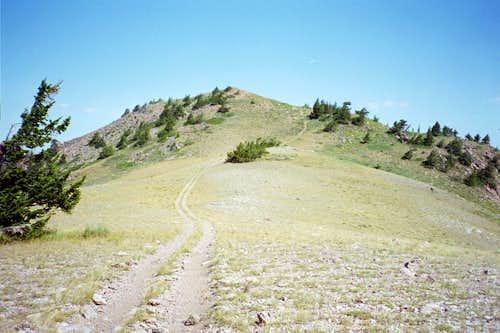 Oxford Ridge