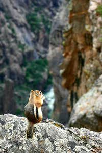 Lunch on the Precipice