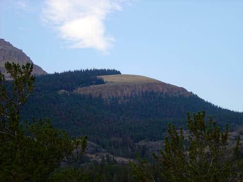 Old Glacier Trail