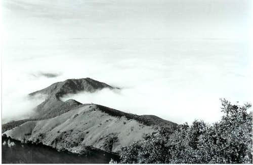 Mt Diablo on a foggy day in...