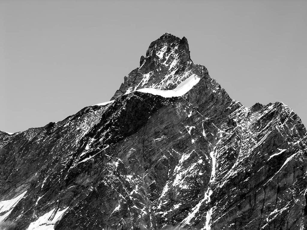 La Dent d'Hérens (4178 m), versante est