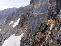 Mount Neva North Ridge