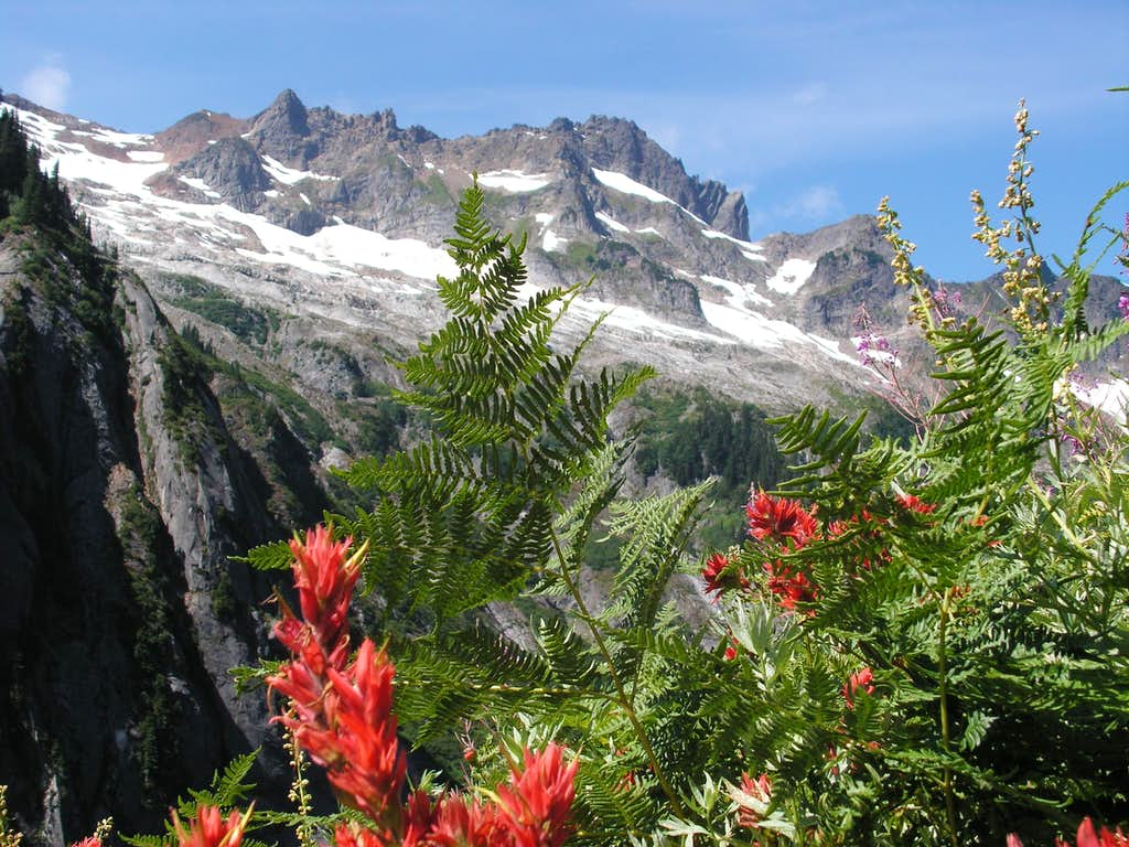 Sefrit Mountain on trail to Ruth/Hannegan Pass