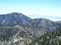 Cucamonga Bighorn Timber dayhike