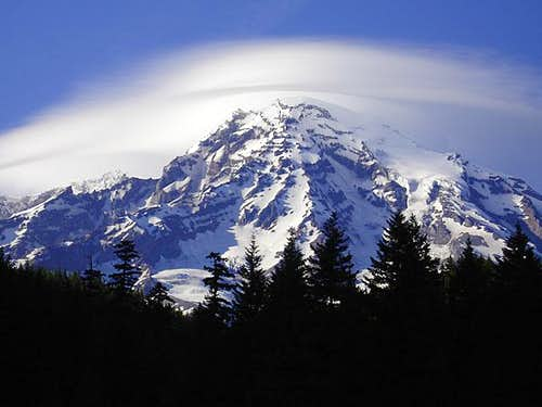 Rainier from Longmire