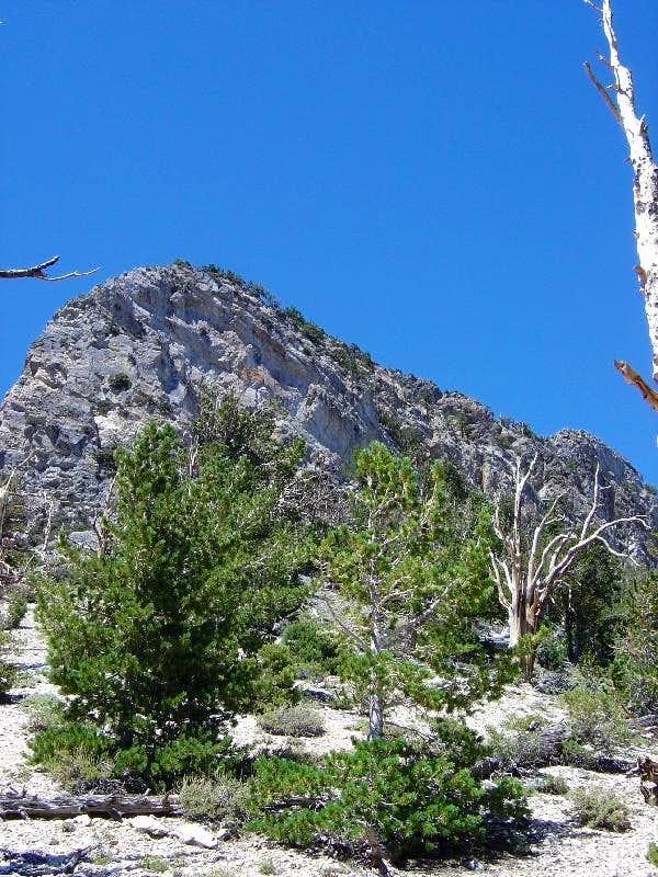 Macks Peak Approaching the Saddle