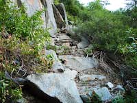Some Old Steps on the Ledge Trail