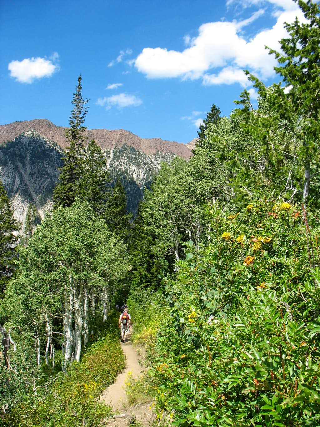 Hiking back down the Red Pine Trail