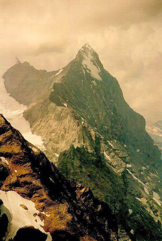 Eiger seen from the summit of Wetterhorn