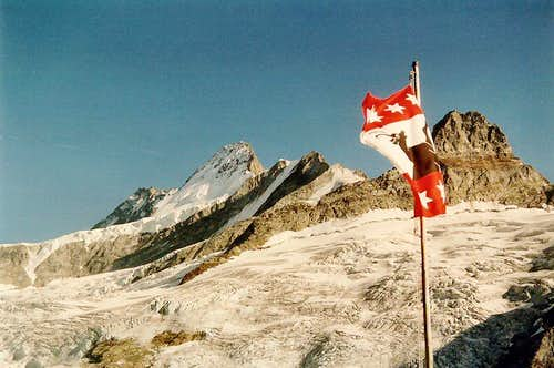 Lauteraarhorn and Schreckhorn seen from the Gleckstein Hut