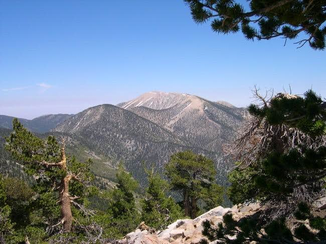 San Gorgonio from Anderson...