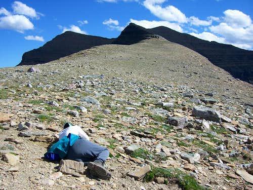 Mt. Helen