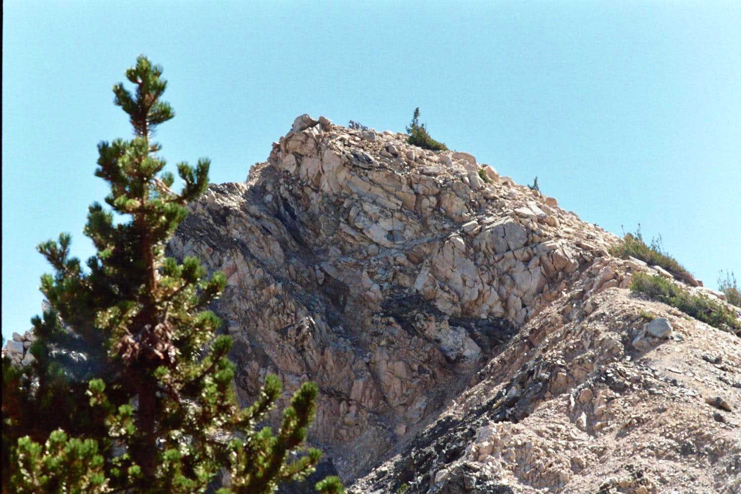 Dragons Head via San Gorgonio Summit from Vivian Creek Trailhead