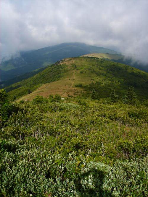 Golden Ridge