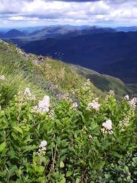 Northeast from Algonquin Peak