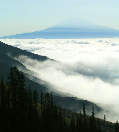 amazing veiw of fog and mt. Adams