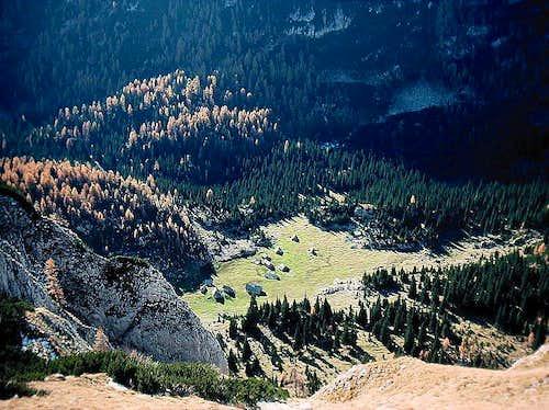 Laz alpine meadow