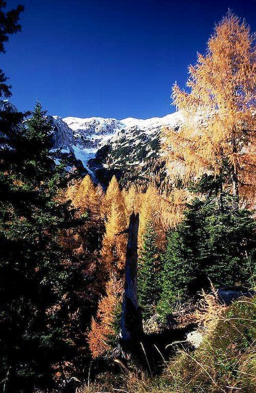 Autumn above Laz meadow