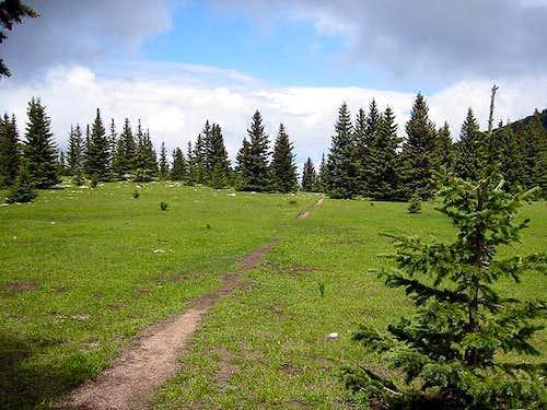 Trail 251 at Puerto Nambe