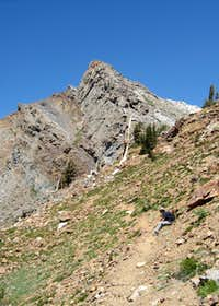 Mineral Peak from the Crysal Lake Trail