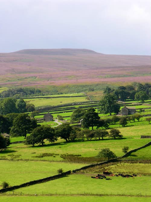 Typical Pennine Landscape - Costerdale