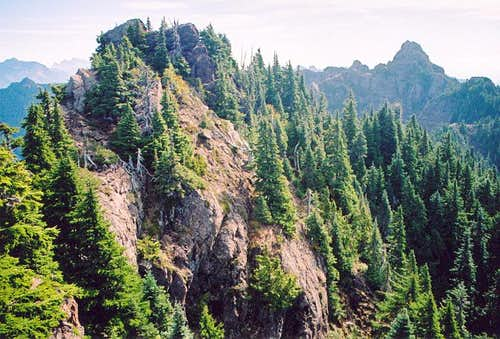 Wynoochee Point