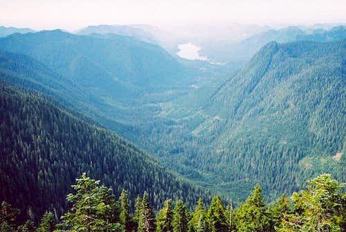 Wynoochee River Valley