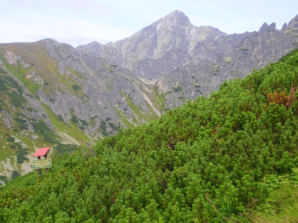 Krivan from chalet pod Soliskom