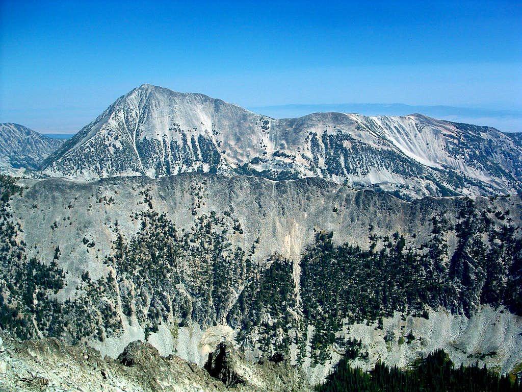 Homer Young's Peak