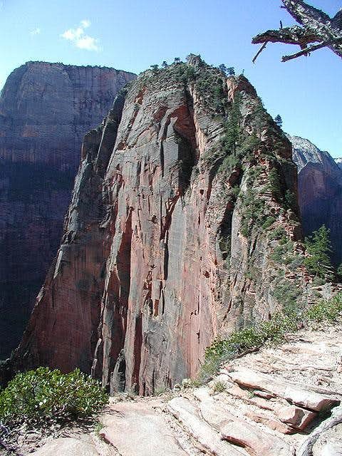 Angels Landing from Scout...