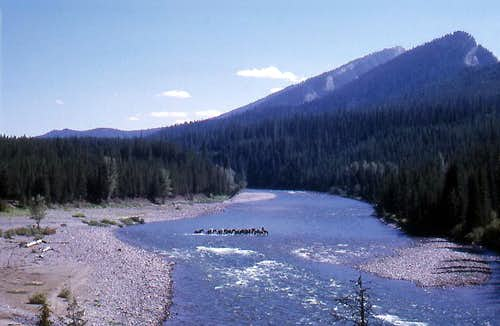 Fording South Fork of the Flathead River