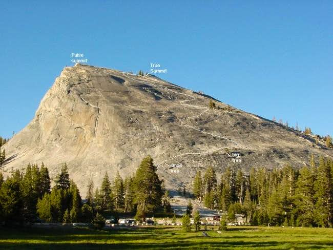 Lembert Dome's South Slope ....