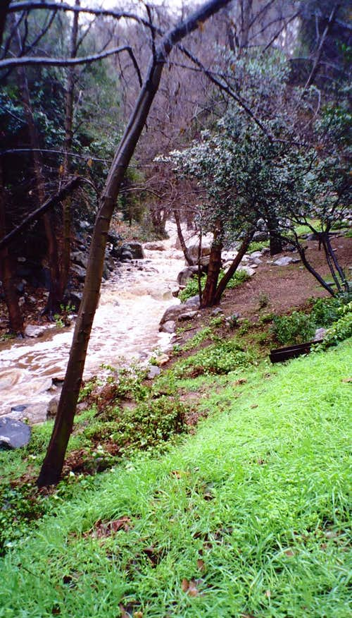 Stream Next to Millard Campground, San Gabriel Mountains