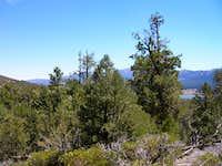 Cougar Crest Trail and Big Bear Lake