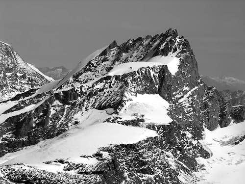 Rimpfischorn (4199 m)