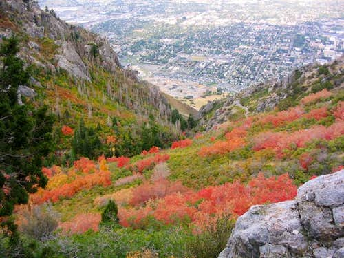 Provo from canyon south of Y Mountain