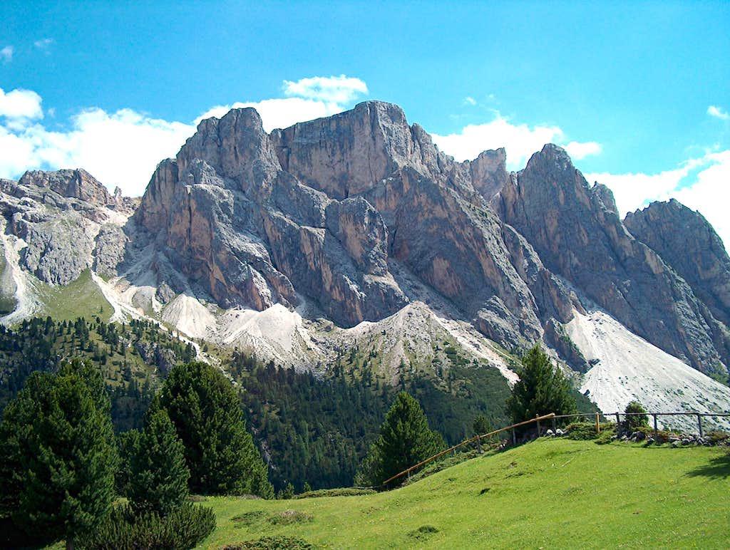 Monte Stevia