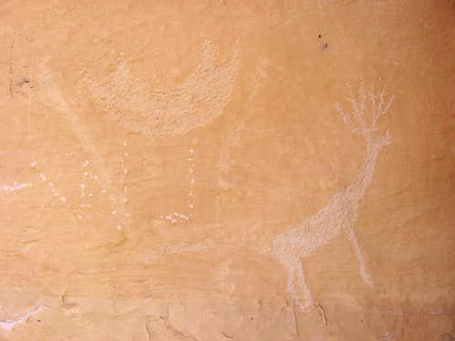 Petoglyphs
