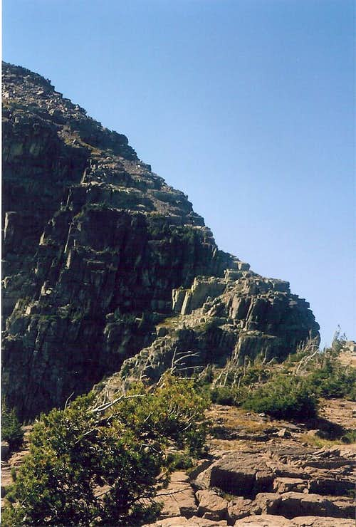 E. Ridge of Gray Wolf