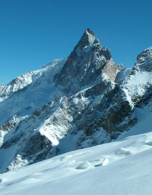 Ecrins - La Meije (North face)