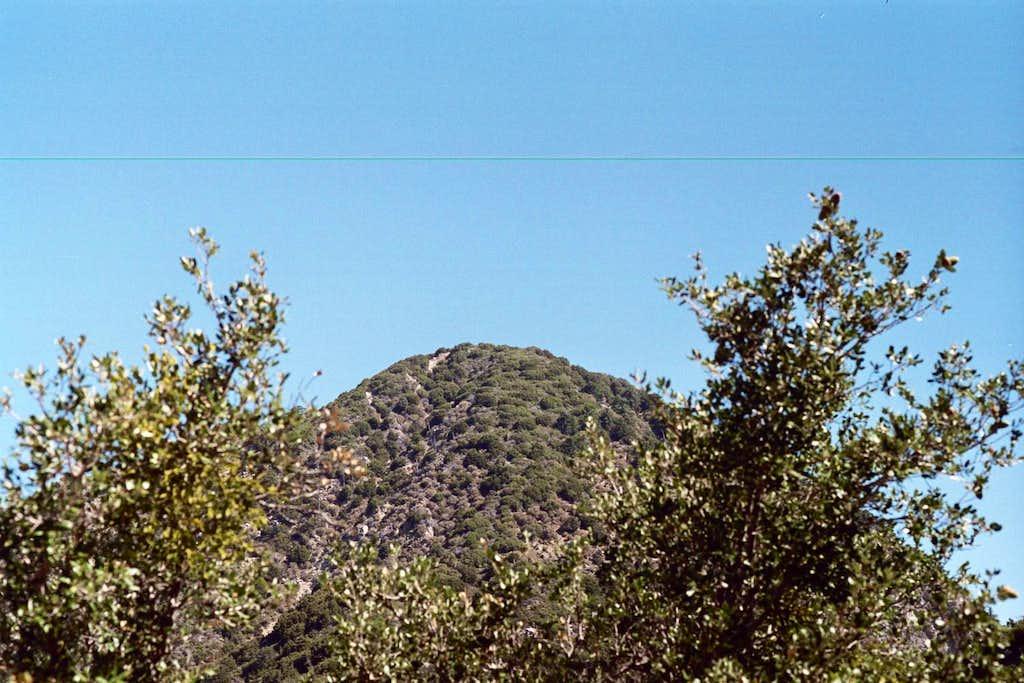 San Gabriel Peak (6,161 ft.), San Gabriel Mountains