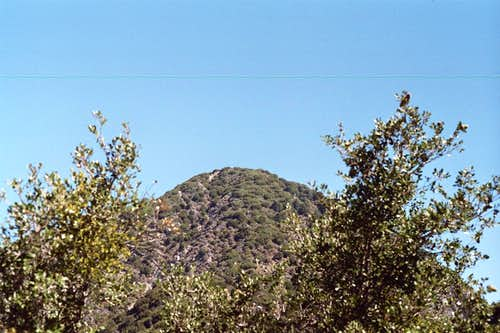 San Gabriel Peak (6,161 ft.), San Gabriel Mountains