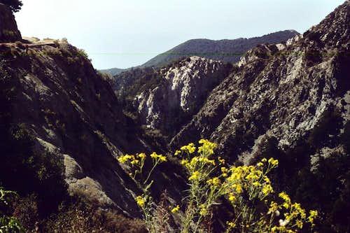 View Towards Eaton Canyon, San Gabriel Mtns.
