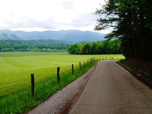 Road through Cades Cove