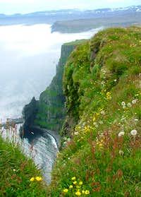 Hornstrandir Iceland
