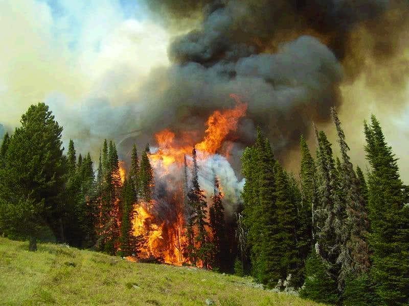 Heavens Gate Complex - Green Acres Fire