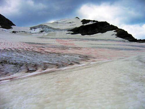 Sperry Glacier, Gunsight Mtn Center Summit.