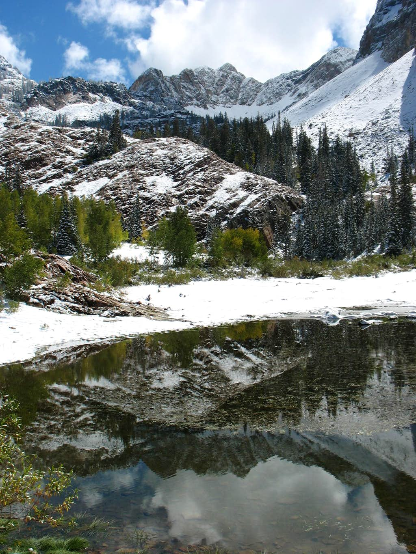 Monte Cristo reflection